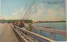 Early-Mid 1900's Fishing on Ringling Causeway Sarasota, Florida NOS Postcard..