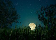 The Moon by Elena Cherepitskaya on 500px