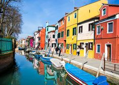 This and other digital images are available for sale. Contact me at info Jean Luc Godard, Lasting Memories, Professional Women, Professional Photographer, House Colors, Digital Image, Animal Photography, Venice, Carnival