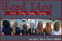 Lice Stay Away cover