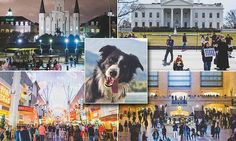 Photographer uses VERY patient dog to create Where's Waldo-style book