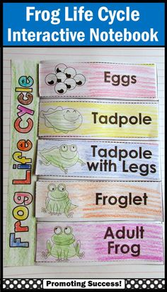 """Frog Life Cycle: Your students will love this printable frog life cycle interactive notebook activity. It is a great supplement to your frog unit and works well in science centers. The students will color and cut out a """"lift the flap"""" frog life cycle page and attach it to their interactive notebooks. Two sets of frog life cycle descriptions are provided.   https://www.teacherspayteachers.com/Product/Frog-Life-Cycle-1216324"""