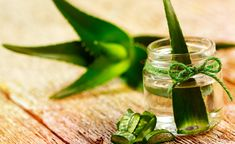 Remedies For Acne Aloe Vera For Acne: How To Use Aloe Vera For Treating Acne - Want to get rid of unsightly acne and pimples? Right time to get rid of those worst night nightmares by using aloe vera for acne. Aloe Vera Gel, Plantar Aloe Vera, Home Remedies, Natural Remedies, Ayurvedic Remedies, Ayurvedic Herbs, Health Remedies, Dry Hair Treatment, Hair Treatments