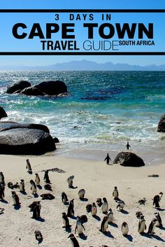 Short stopover in Cape Town? Check out what you can fill 3 days in this South African city with!