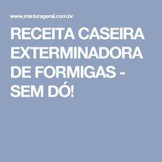 RECEITA CASEIRA EXTERMINADORA DE FORMIGAS - SEM DÓ!