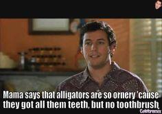 38 Best Adam Sandler Movie Quotes Images Adam Sandler Movies