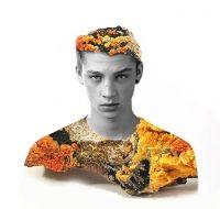Matt Wisniewski - Mineral minds