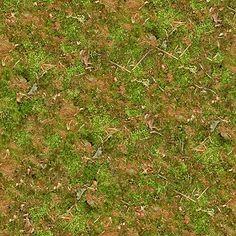 wild grass texture. Textures Texture Seamless | Undergrowth Green Grass Texture 13041  - NATURE ELEMENTS Wild E