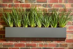 Vertical garden is one of the best options to grow your own garden. Contact at Keystone Gardens to design it in Australia.
