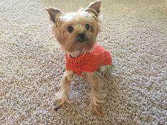 Ravelry: Shirelwebb's Beaded Rib Sweater