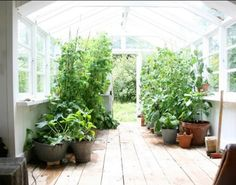 live-in greenhouse