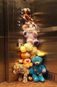 Great picture ideas for the stuffed animals Slumber Parties, Sleepover, School Holiday Activities, Great Pictures, Picture Ideas, Fancy Nancy, Children Images, School Holidays, Toys Photography