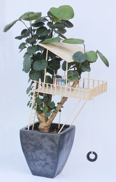 How to build this simple treehouse in a houseplant - so clever!!