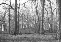 Northern Indiana's largest Iroquois burial mound in Miami County, Indiana