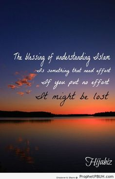 The blessings of understanding Islam... - Islamic Quotes, Hadiths, Duas← Prev Next →