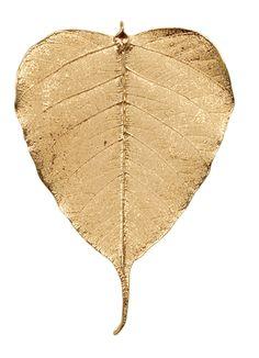 Gold | ゴールド | Gōrudo | Gylden | Oro | Metal | Metallic | Shape | Texture | Form | Composition | Bodhi Leaf
