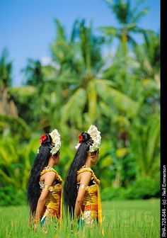 Bali's Top 10 Secrets   Kura-Kura Bali Guide