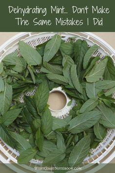 The past 2 years, I've had disastrous results dehydrating mint. They were too brown, no smell or flavour. Learn the changes I made to rectify the problem Dehydrated Vegetables, Dehydrated Food, Canned Food Storage, Homemade Spices, Canning Recipes, Canning 101, Canning Jars, Dehydrator Recipes, Drying Herbs