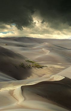 I don't know if it's the Sahara, but would LOVE to see the dessert....... Would LOVE to do Africa. Period.