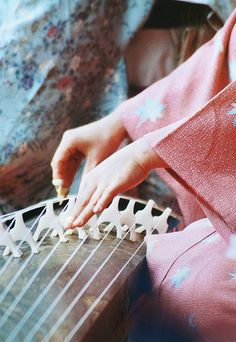 "tokyopic-official: ""The Elegant Traditional Japanese Musical Instrument, Koto / Tokyo Pic """