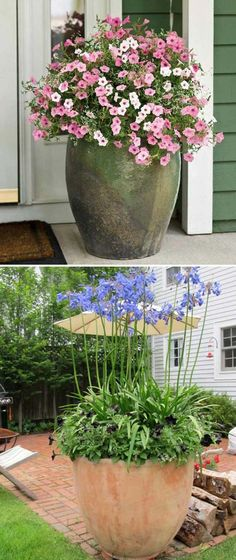 Giant flower pots usually have a strong visual effect, so housing the blooms in a giant glazed clay pot and placing it in front of your porch would be sure to catch your guest's heart.