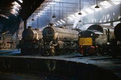 York shed April 1966 (Bill Wright) Train Art, Diesel Locomotive, Steam Locomotive, National Railway Museum, Steam Railway, American, British Rail, Type 4, Old Trains