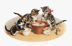 Il gatto e la luna editrice: Gattini e altre bestiole. Gli animali di Anna dai Capelli Rossi.