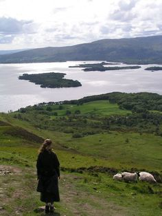 lindasinklings:    noroomforthepresent:    Another day in the life of future me.  gloomytreehouse:    Bonnie banks of Loch Lomond      via (jada111)