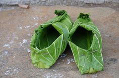 cabbage shoes