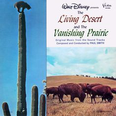 339 Best Vintage Disney Album Covers Images Old Disney