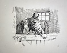 Original Pencil Drawing Horse and Two Cats by Sam Savitt from Artist's Estate Horse Drawings, Realistic Drawings, Animal Drawings, Art Drawings, Drawing Animals, Horse Cartoon, Scratchboard Art, Horse Illustration, Horse Artwork