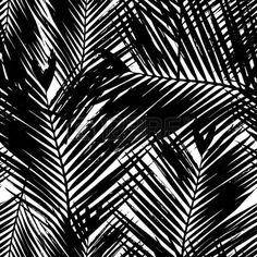 fern silhouette: Seamless repeating pattern with silhouettes of palm tree leaves in black and white. Palm Tree Leaves, Palm Trees, Plant Leaves, Silhouette S, Repeating Patterns, Royalty Free Images, Stock Photos, Black And White, Illustration