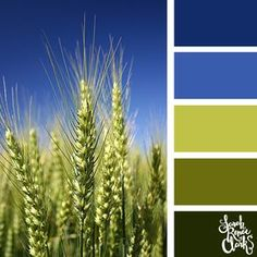 Bright greens and blues | Click for more color combinations and color palettes inspired by the Pantone Fall 2017 Color Trends, plus other coloring inspiration at http://sarahrenaeclark.com | Colour palettes, colour schemes, color therapy, mood board, color hue