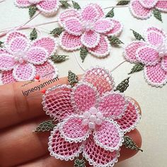 Fotoğraf açıklaması yok. Crochet Crocodile Stitch, Knit Crochet, Crochet Flower Patterns, Crochet Flowers, Needle Lace, Knitted Shawls, Knitting Socks, Hand Embroidery, Needlework