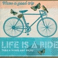 5133 Life is a ride