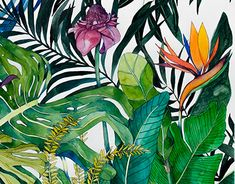 New Work, Plant Leaves, How To Draw Hands, Behance, Gallery, Drawings, Check, Illustration, Plants