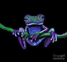 Purple Green Ghost Frog Art Print by Nick Gustafson. All prints are professionally printed, packaged, and shipped within 3 - 4 business days. Choose from multiple sizes and hundreds of frame and mat options. Funny Frogs, Cute Frogs, Les Reptiles, Reptiles And Amphibians, Mammals, Colorful Animals, Cute Animals, Beautiful Creatures, Animals Beautiful