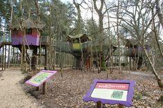 BeWILDerville is maar één van de verschillende haltes op Swampy's avontuur.
