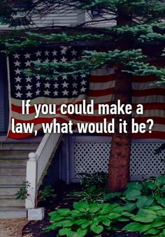 """If you could make a law, what would it be?"""