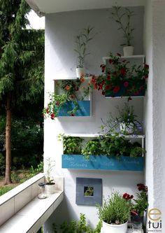 skrzynki_z_szuflad_13 Plants, Balcony, Plant, Planets