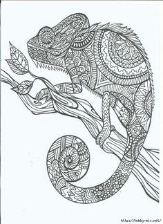 Zentangle chameleon - Pesquisa Google