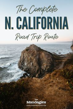 Redwoods, Shasta, rainforest, huge trees, dramatic coastline...need we say more? Northern California is brimming with adventure, and we're sharing the best Northern California road trip itinerary to see it all right here! #northerncalifornia #roadtrip #redwoods #mtshasta
