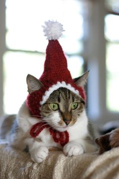 The Santa Cat Hat by scooterKnits on Etsy, $18.00