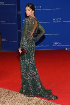 Emily Ratajkowski in Monique Lhuillier - All the Looks from the 2016 White House Correspondents' Dinner  - Photos