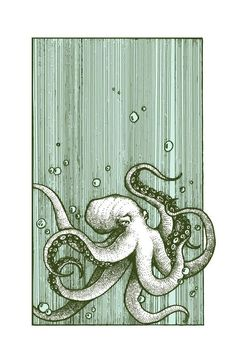 Drawings Octopus x - This is a digital reproduction of an original pen and ink drawing. Approximately x printed on crisp 80 lb cardstock. All prints are packaged in a vinyl sheath with a thick piece of matboard for protection. Art Inspo, Kunst Inspo, Art And Illustration, Illustrations, Octopus Illustration, Octopus Art, Octopus Drawing, Octopus Sketch, Whale Drawing