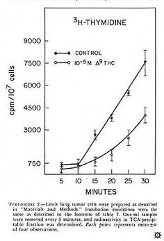 1974 Study showing cannabis kills cancer cells: Antineoplastic Activity of Cannabinoids