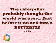 The caterpillar probably thought the world was over….Just before it turned into a BUTTERFLY ~♥♥~