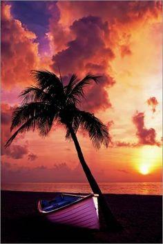 Poster 40 x 60 cm: Palme im Sonnenuntergang von Wonderful Dream Picture - hochwertiger Kunstdruck, neues Kunstposter von POSTERLOUNGE, http://www.amazon.de/dp/B00IOCEX9A/ref=cm_sw_r_pi_dp_eKghtb1XGJSS7  #poster #love #sunset