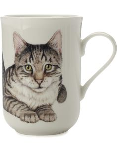 Cashmere Cat Mug European Shorthair Gb | David Jones