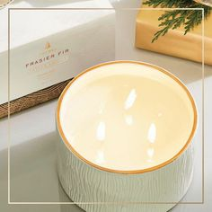 Thymes Frasier Fir Gilded Collection 3-Wick Ceramic Candle